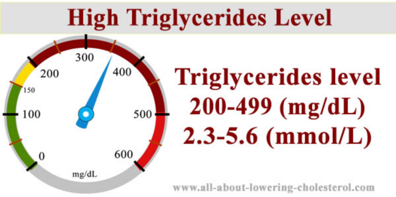 triglyceride cao la gi